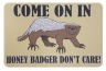 Honey Badger door mat, I love the honey badger video. What better way to immortalize by getting a doormat? Only problem is I am not allowed to have a doormat outside my door, apartment rules. So I would have to put it in the bathroom where it wouldn't make any sense, but it would still be awesome.