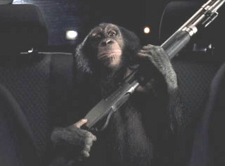 Resultado de imagen de monkey with gun