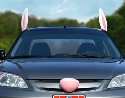 Easter Bunny ears and nose. Because tacky car ornaments that make your automobile resemble a fictional holiday animal can't be limited to just Christmas. Actually at this point I just want to get the image of the car dent vagina out of my head.